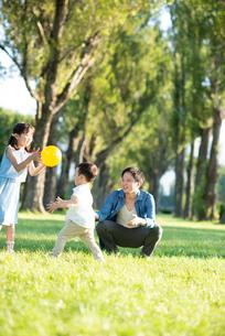 ポプラ並木で遊ぶ親子の写真素材 [FYI01955357]