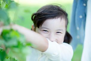 微笑む女の子の写真素材 [FYI01955722]