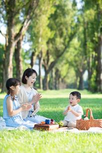 ポプラ並木でピクニックをする親子の写真素材 [FYI01955938]