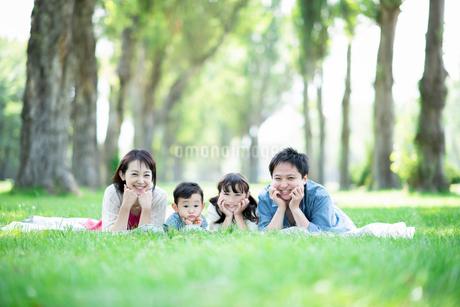 ポプラ並木で寝そべる家族の写真素材 [FYI01956101]
