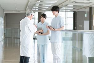 打ち合わせをする医者と看護師の写真素材 [FYI01957165]