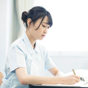勉強をする看護学生の写真素材 [FYI01957451]
