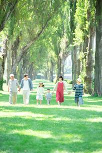 ポプラ並木を歩く3世代家族の写真素材 [FYI01957652]