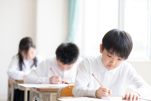教室で授業を受ける小学生の写真素材 [FYI01957653]