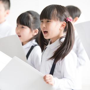 合唱をする小学生の写真素材 [FYI01957843]