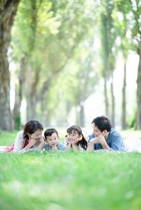 ポプラ並木で寝そべる家族の写真素材 [FYI01958046]