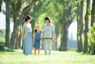 ポプラ並木で談笑をする3世代家族の写真素材 [FYI01958189]
