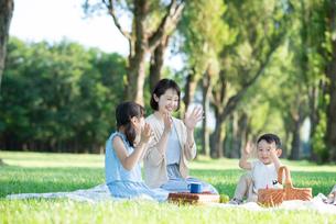 ポプラ並木でピクニックをする親子の写真素材 [FYI01958231]