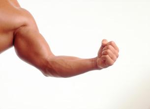 男性の腕の写真素材 [FYI01959190]