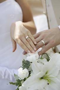 結婚指輪の写真素材 [FYI01960566]
