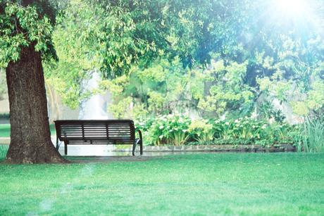 公園イメージの写真素材 [FYI01961060]