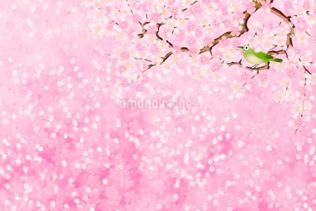 桜とメジロのイラスト素材 [FYI01961589]