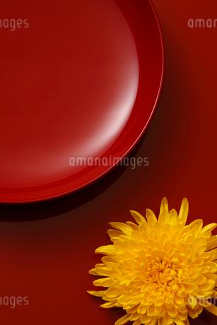 漆器と菊の花の写真素材 [FYI01961929]