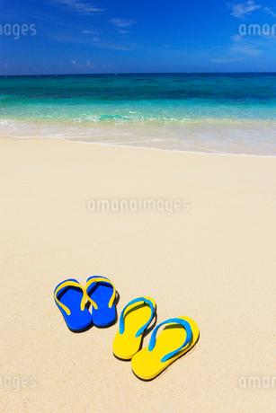 ビーチサンダルと海の写真素材 [FYI01968864]