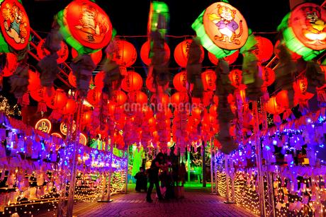 台北市政府広場の台北燈會 台北市の写真素材 [FYI01973943]