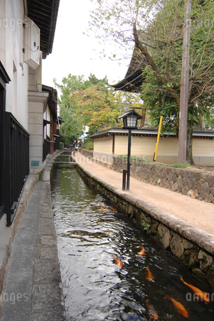 飛騨古川の街並み 岐阜県の写真素材 [FYI01974279]