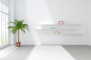 観葉植物が置かれた白い部屋 CGの写真素材 [FYI01974345]
