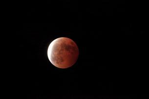 皆既月食 滋賀県の写真素材 [FYI01974740]