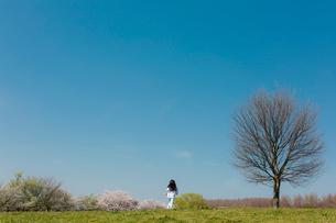春の公園を走る女の子の後ろ姿の写真素材 [FYI01975618]