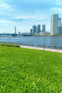 春海橋公園から望む晴海周辺のビル群の写真素材 [FYI01976106]