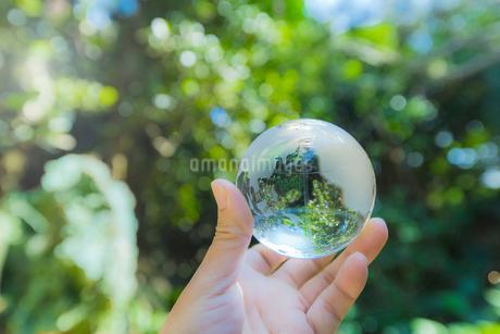 ガラスの地球儀を持つ手の写真素材 [FYI01976318]