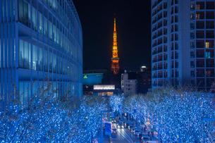 六本木けやき坂通りのイルミネーションと東京タワーの写真素材 [FYI01976482]