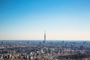 サンシャイン60より望む東京スカイツリーの写真素材 [FYI01977316]