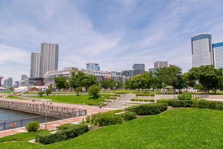 豊洲公園と豊洲のビル群の写真素材 [FYI01977834]
