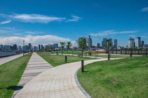 豊洲ぐるり公園の遊歩道と晴海方面のビル群の写真素材 [FYI01978595]