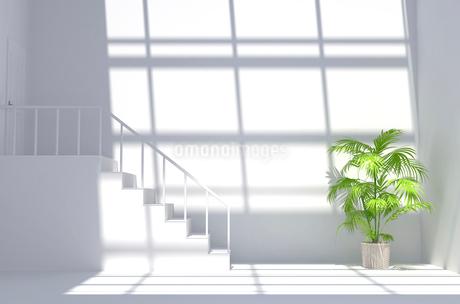観葉植物が置かれた白い部屋 CGの写真素材 [FYI01978716]