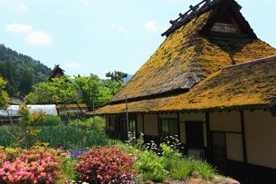 初夏のかやぶきの里 京都の写真素材 [FYI01979385]