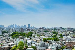 新宿の高層ビル群と新緑の街並みの写真素材 [FYI01979420]