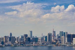 芝浦方面のビル群と東京タワーの写真素材 [FYI01980034]