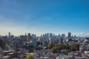 新宿副都心の高層ビル群と家並みの写真素材 [FYI01980986]