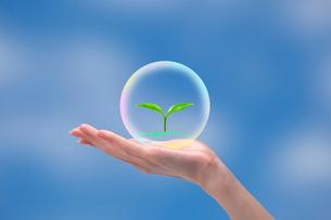 若葉が浮かぶ球体を持つ女性の手 CGのイラスト素材 [FYI01981140]