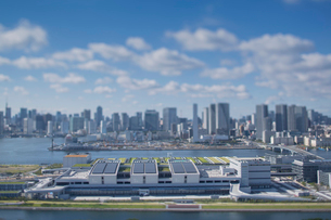 豊洲市場と晴海方面のビル群と青空の写真素材 [FYI01981433]