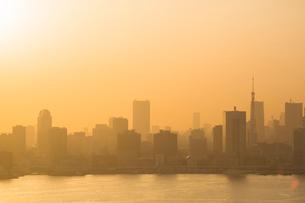 黄砂に霞む東京湾岸のビル群と東京タワーの写真素材 [FYI01981454]