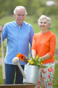 Senior couple gardeningの写真素材 [FYI01983929]
