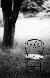 Empty wire chair in backyardの写真素材 [FYI01984057]