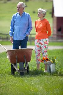 Senior couple gardeningの写真素材 [FYI01984164]
