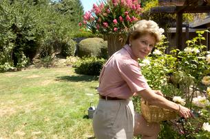 Woman gardeningの写真素材 [FYI01984832]