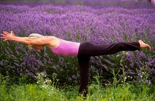 Woman in yoga pose near lavender fieldの写真素材 [FYI01984854]