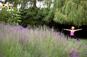 Woman in yoga pose near lavender fieldの写真素材 [FYI01985036]