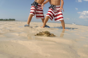 Young boys playing in ocean with crabの写真素材 [FYI01985893]
