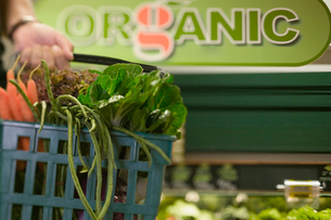 Basket in organic grocery storeの写真素材 [FYI01985937]