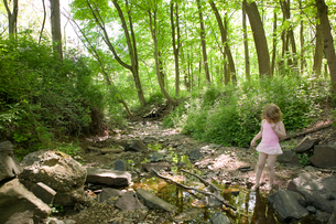 Young girl walking in creek in woodsの写真素材 [FYI01986260]