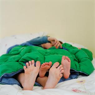 Childrens bare feet beneath blanketの写真素材 [FYI01986733]