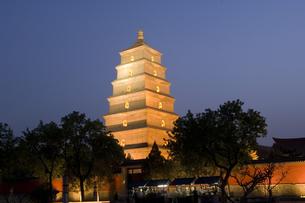 Big Wild Goose pagoda at nightの写真素材 [FYI01986835]