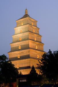 Big Wild Goose pagoda at nightの写真素材 [FYI01986947]