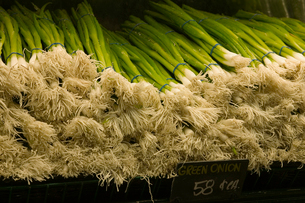 green onions for sale in grocery storeの写真素材 [FYI01987909]